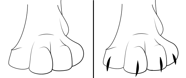 paws_compare.PNG